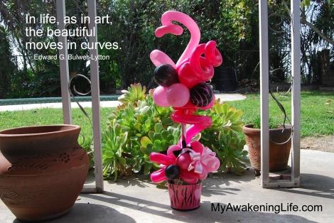 pink_zebra_curves