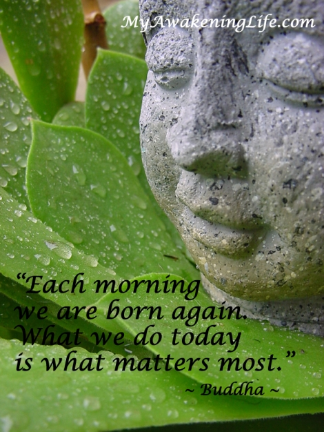 good_morning_buddha