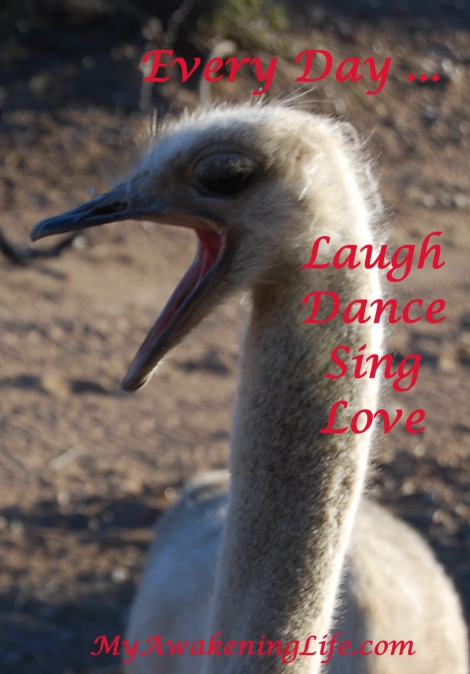 laugh-sing-dance-love