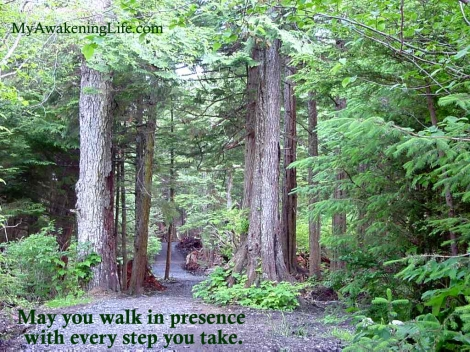 The Path of Presence