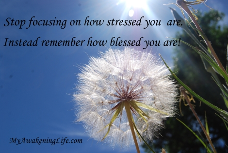 stressed_blessed
