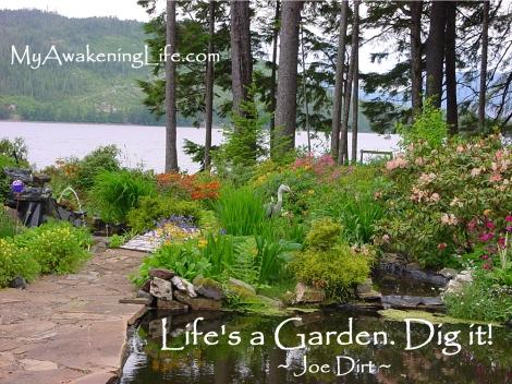 life_garden_