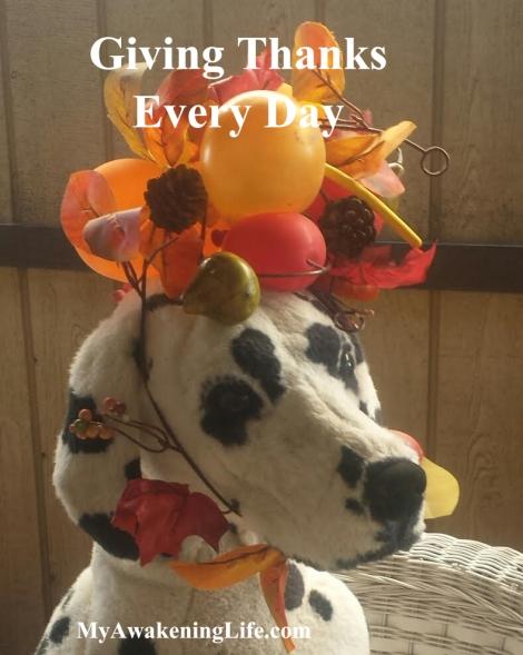 dot_thanksgiving