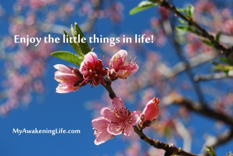 little_things