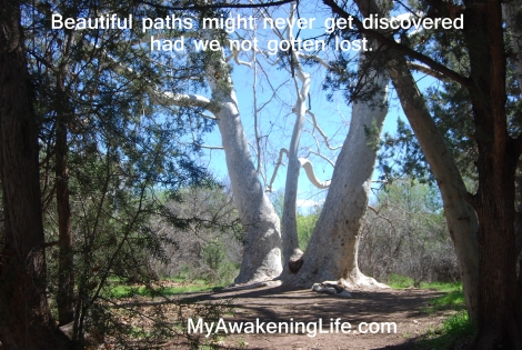 beautiful_paths
